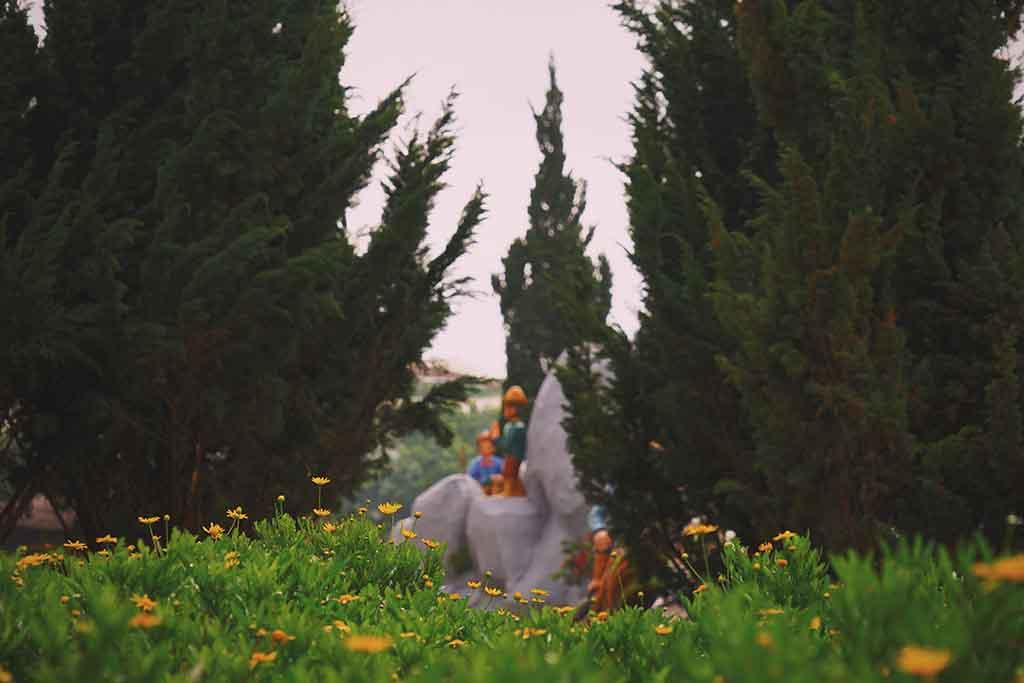 Miracle Herb Garden
